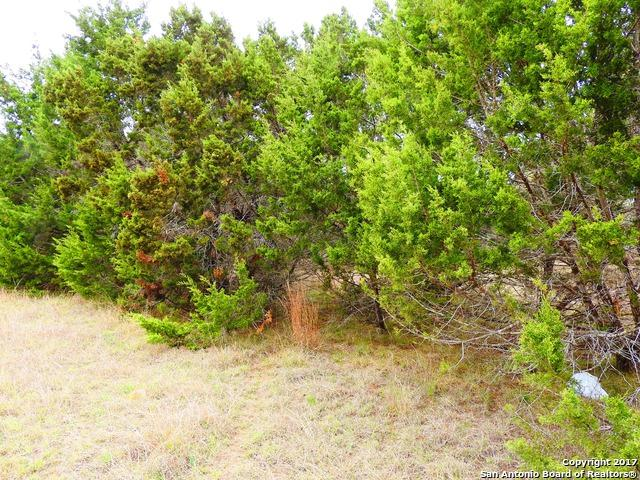 LOT 1 8th Street, Lakehills, TX 78063 (MLS #1229265) :: Magnolia Realty