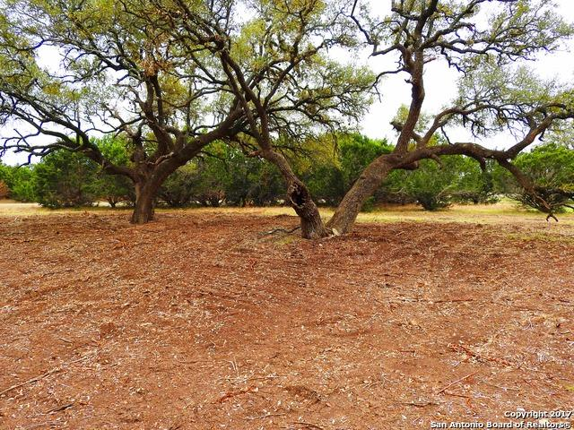 LOT 91 8th Street, Lakehills, TX 78063 (MLS #1229272) :: Exquisite Properties, LLC