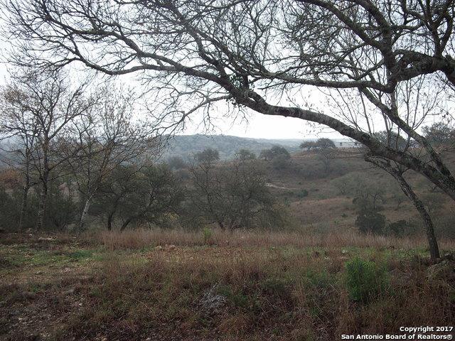 LOT 18 Sun Valley Dr, Spring Branch, TX 78070 (MLS #1229552) :: Magnolia Realty