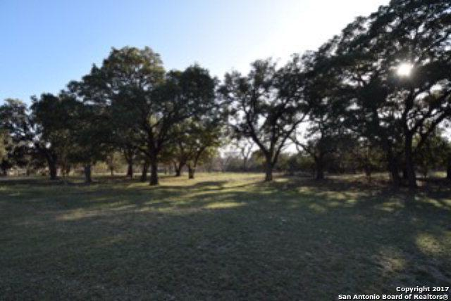 246 River Rd W, Ingram, TX 78025 (MLS #1229853) :: Ultimate Real Estate Services