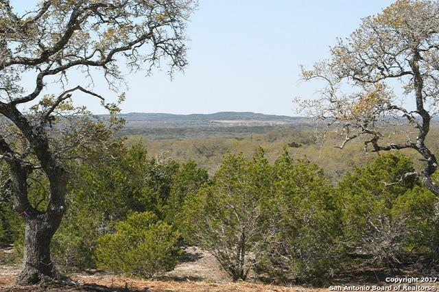 1008 Monteola, Bulverde, TX 78163 (MLS #1234689) :: Exquisite Properties, LLC