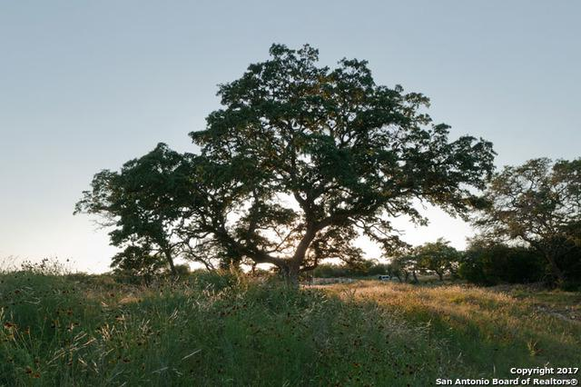 1051 Monteola, Bulverde, TX 78163 (MLS #1234707) :: Magnolia Realty