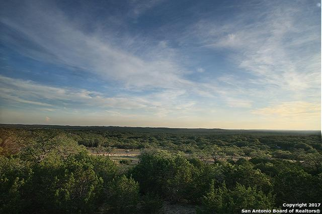 1221 Encinitas, Bulverde, TX 78163 (MLS #1234719) :: Exquisite Properties, LLC