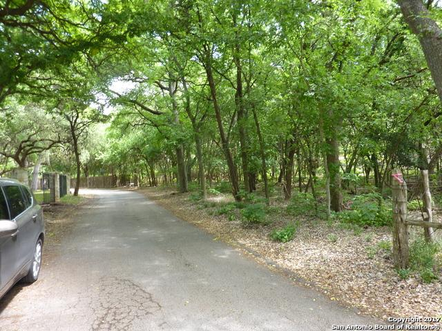 19202 Lovers Ln, Grey Forest, TX 78023 (MLS #1235850) :: Ultimate Real Estate Services
