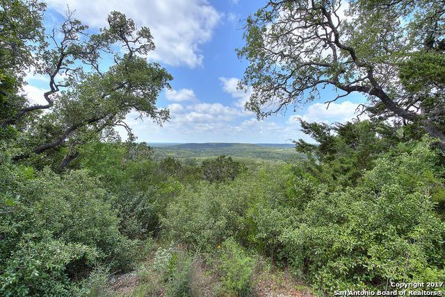 173 N Whisper Valley Road, Hondo, TX 78861 (MLS #1238200) :: Magnolia Realty