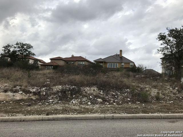 8218 Sierra Hermosa, San Antonio, TX 78255 (MLS #1238642) :: Alexis Weigand Real Estate Group