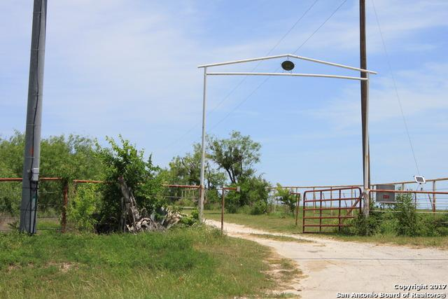 1876 Fm 1103 Tx, Cibolo, TX 78108 (MLS #1239556) :: Alexis Weigand Real Estate Group
