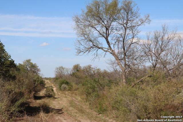 813 Venado Grande Rd, Eagle Pass, TX 78877 (MLS #1243145) :: The Castillo Group