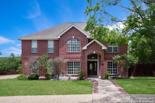 1418 Fawn Hvn, San Antonio, TX 78248 (MLS #1243541) :: The Castillo Group