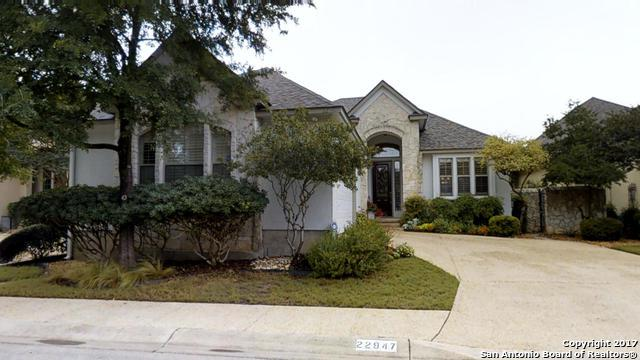 22947 Osprey Rdg, San Antonio, TX 78260 (MLS #1246632) :: The Graves Group