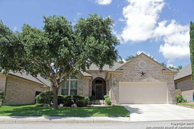 19 Ashford Glen, San Antonio, TX 78232 (MLS #1248104) :: The Graves Group