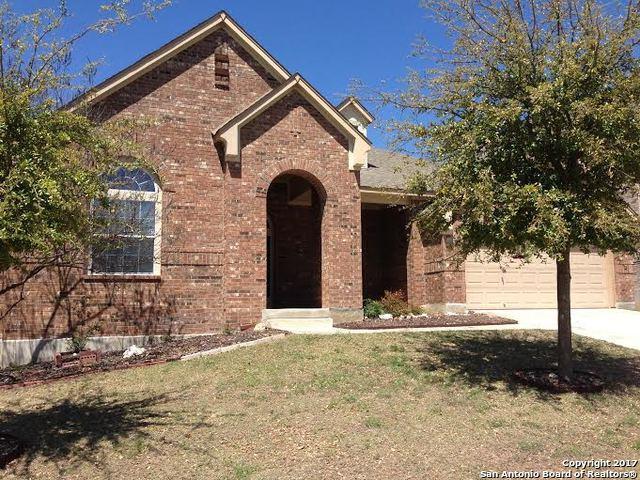 24823 White Creek, San Antonio, TX 78255 (MLS #1250048) :: The Castillo Group