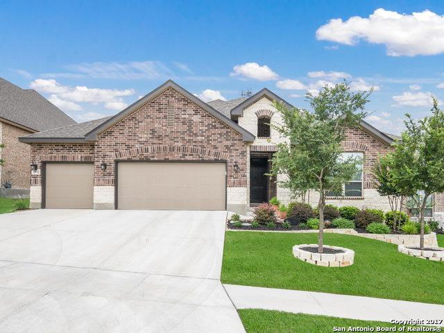 12711 Jasper Leaf, San Antonio, TX 78253 (MLS #1250278) :: The Graves Group