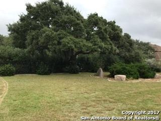 30919 Keeneland Dr, Fair Oaks Ranch, TX 78015 (MLS #1250507) :: Exquisite Properties, LLC