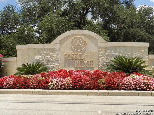 22740 Fossil Rdg, San Antonio, TX 78261 (MLS #1250740) :: Alexis Weigand Real Estate Group