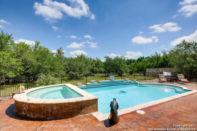 138 Rodeo Dr, Spring Branch, TX 78070 (MLS #1250959) :: Exquisite Properties, LLC