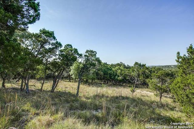 27174 Ranchland Vw, Boerne, TX 78006 (MLS #1251056) :: The Graves Group