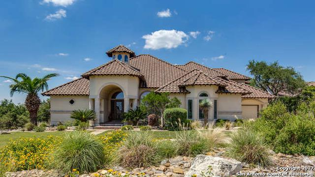 434 Paradise Point Dr, Boerne, TX 78006 (MLS #1251281) :: The Castillo Group