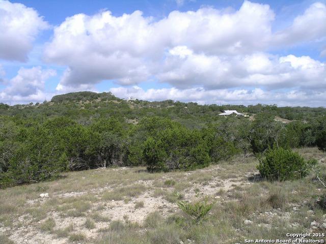436 Taylor Pt, Bulverde, TX 78163 (MLS #1251292) :: Ultimate Real Estate Services
