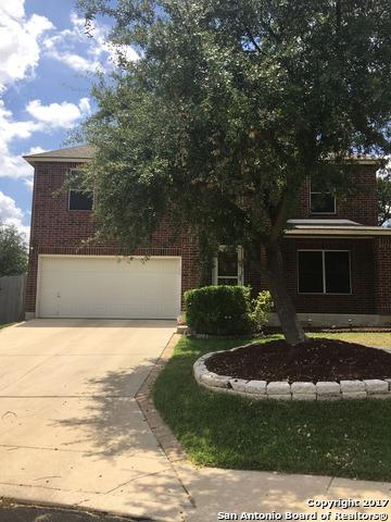10619 Stone Creek Pl, San Antonio, TX 78254 (MLS #1251391) :: The Castillo Group