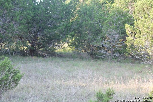 LOT 657 Mountain Drive, Blanco, TX 78606 (MLS #1251557) :: Alexis Weigand Real Estate Group
