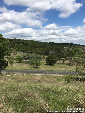 130 Box Canyon Rd, Kerrville, TX 78028 (MLS #1252114) :: Alexis Weigand Real Estate Group