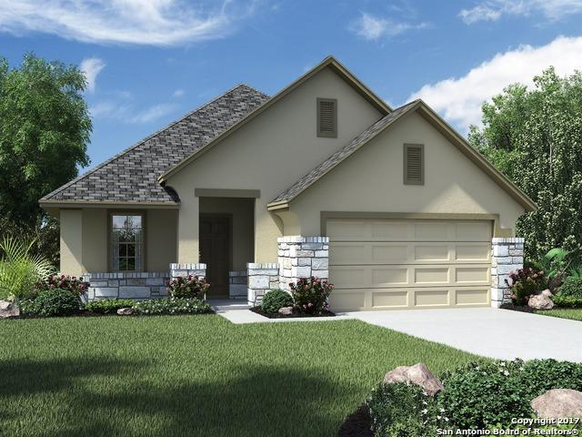 30634 Horseshoe Path, Bulverde, TX 78163 (MLS #1252363) :: Neal & Neal Team