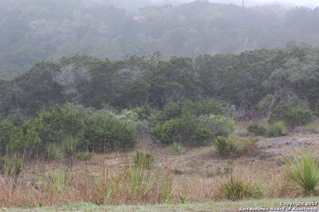 LOT 1B County Road 174, Helotes, TX 78023 (MLS #1252443) :: Neal & Neal Team