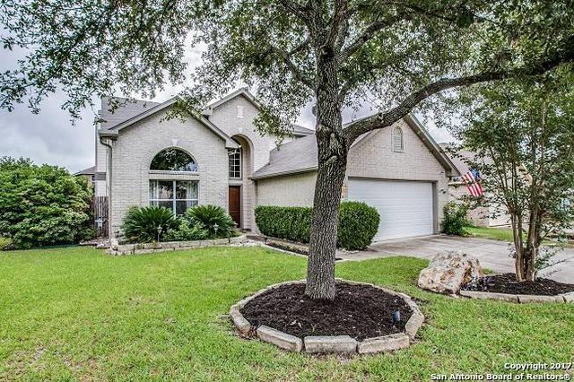 12906 Paint Brush, Helotes, TX 78023 (MLS #1252584) :: Neal & Neal Team