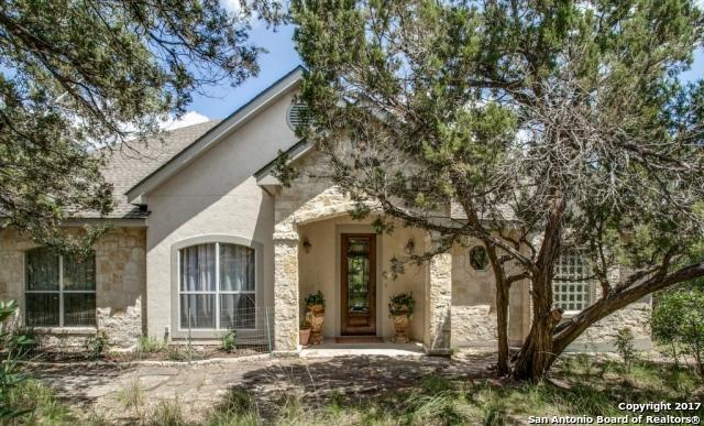 301 Mountain Spring Dr, Boerne, TX 78006 (MLS #1252615) :: Neal & Neal Team