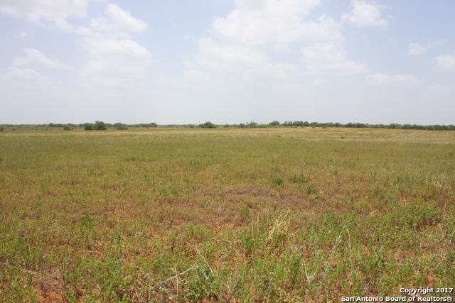 000 W State Hwy 85, Dilley, TX 78017 (MLS #1253434) :: Tom White Group