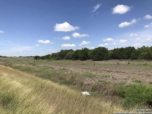785 N Abbott Rd, St Hedwig, TX 78152 (MLS #1254256) :: Ultimate Real Estate Services