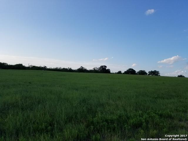 1538 County Road 329, Floresville, TX 78114 (MLS #1255076) :: Magnolia Realty