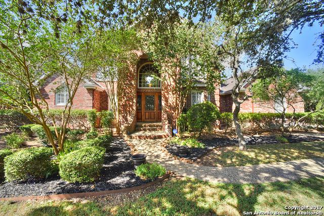 104 Cinnamon Oak, San Antonio, TX 78230 (MLS #1255901) :: Erin Caraway Group