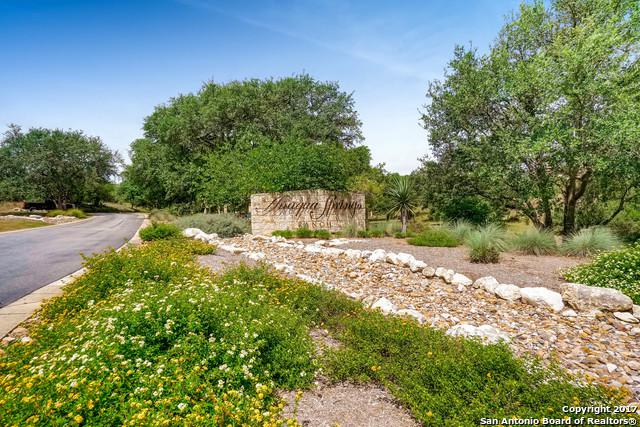 11102 Caliza Blf, Boerne, TX 78006 (MLS #1256180) :: The Graves Group