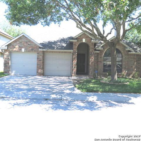 9431 Camino Venado, Helotes, TX 78023 (MLS #1257225) :: The Graves Group