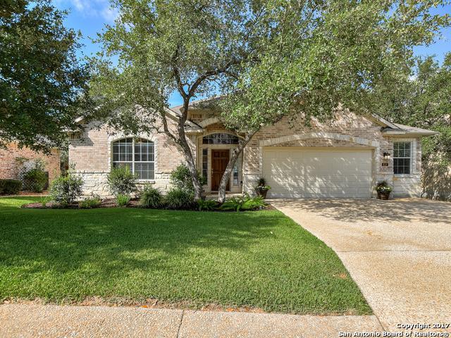 610 Enchanted Way, San Antonio, TX 78260 (MLS #1257558) :: The Graves Group