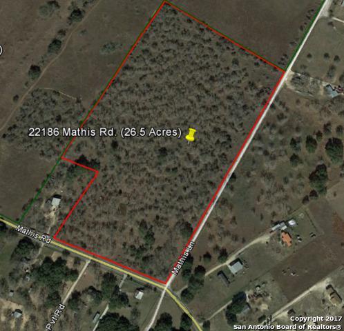 22186 Mathis Rd, San Antonio, TX 78264 (MLS #1258281) :: Magnolia Realty