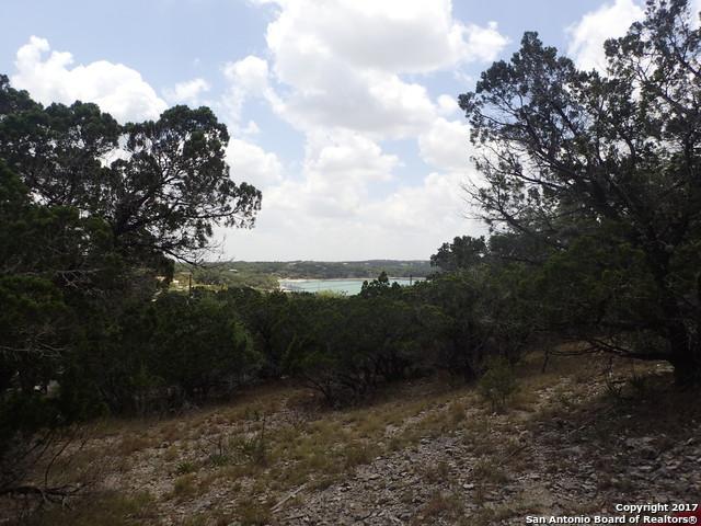 37 Park Rd, Lakehills, TX 78063 (MLS #1258534) :: Magnolia Realty