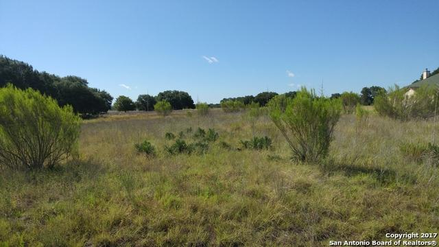 LOT 291 Appaloosa Hollow - Photo 1