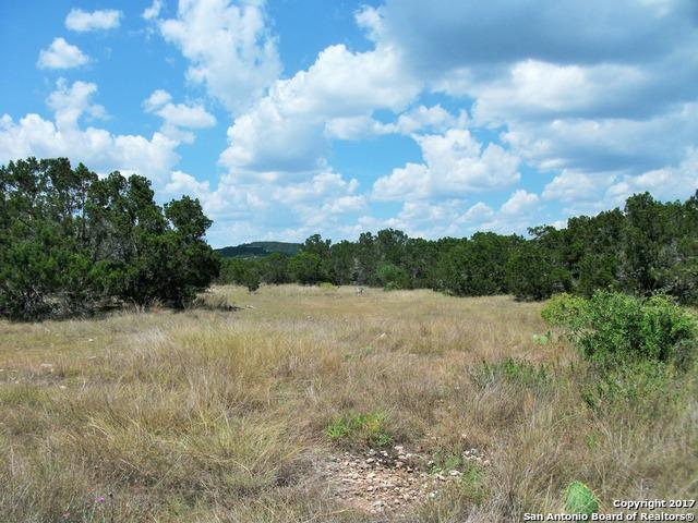 1264 Canyon Curve, Spring Branch, TX 78070 (MLS #1259805) :: Alexis Weigand Real Estate Group