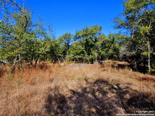 105 Cielo Vis, Canyon Lake, TX 78133 (MLS #1259968) :: Magnolia Realty