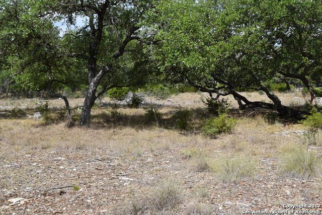 LOT 175 Rio Brazos, Boerne, TX 78006 (MLS #1261036) :: Magnolia Realty