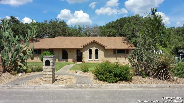 110 Canyon View St, San Antonio, TX 78232 (MLS #1261087) :: Exquisite Properties, LLC