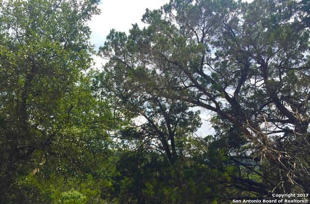 1785 Trail Pass Dr, Canyon Lake, TX 78133 (MLS #1261266) :: Magnolia Realty