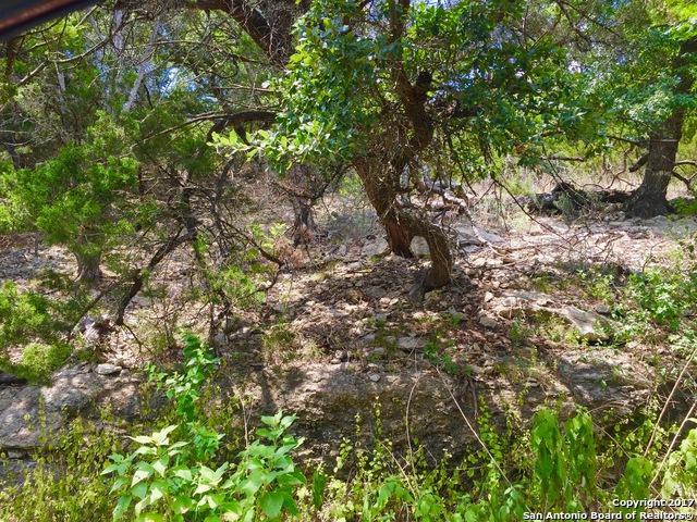 1723 Trail Pass Dr, Canyon Lake, TX 78133 (MLS #1261381) :: Magnolia Realty