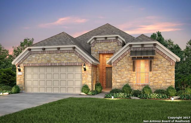 12225 Bianca Mill Way, San Antonio, TX 78254 (MLS #1261606) :: Exquisite Properties, LLC