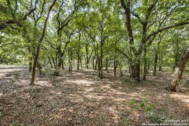 125 Turnberry Way, San Antonio, TX 78230 (MLS #1261950) :: Exquisite Properties, LLC