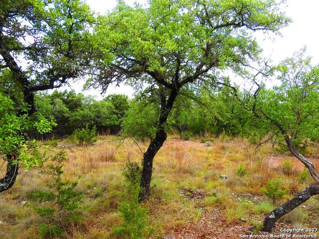 427 Lake Park Drive, Lakehills, TX 78063 (MLS #1262116) :: Magnolia Realty