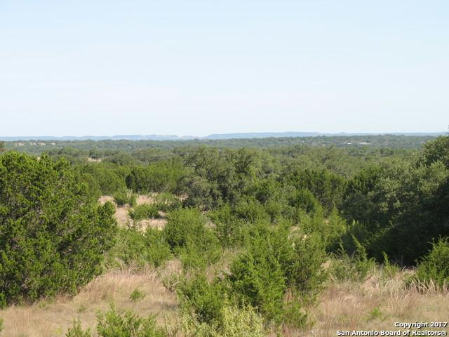 355 Marshall Ridge Dr, Johnson City, TX 78636 (MLS #1262432) :: Ultimate Real Estate Services